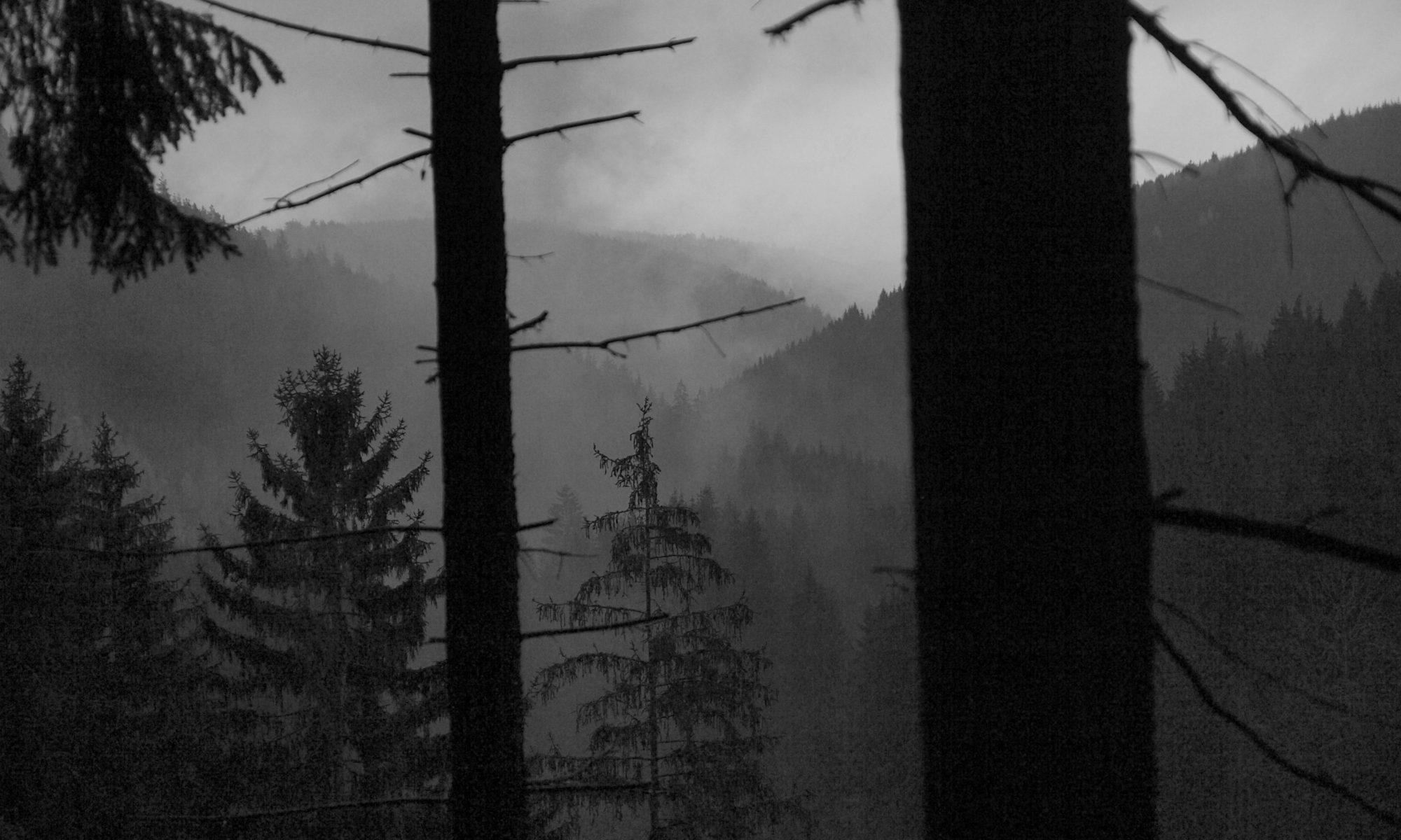 Rauhe Landschaften gibt es im Thüringer Schiefergebirge zu entdecken