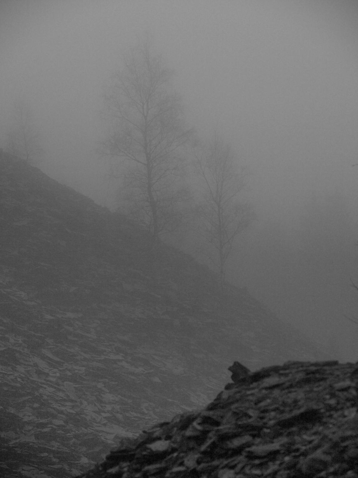 Schieferhalde im Nebel