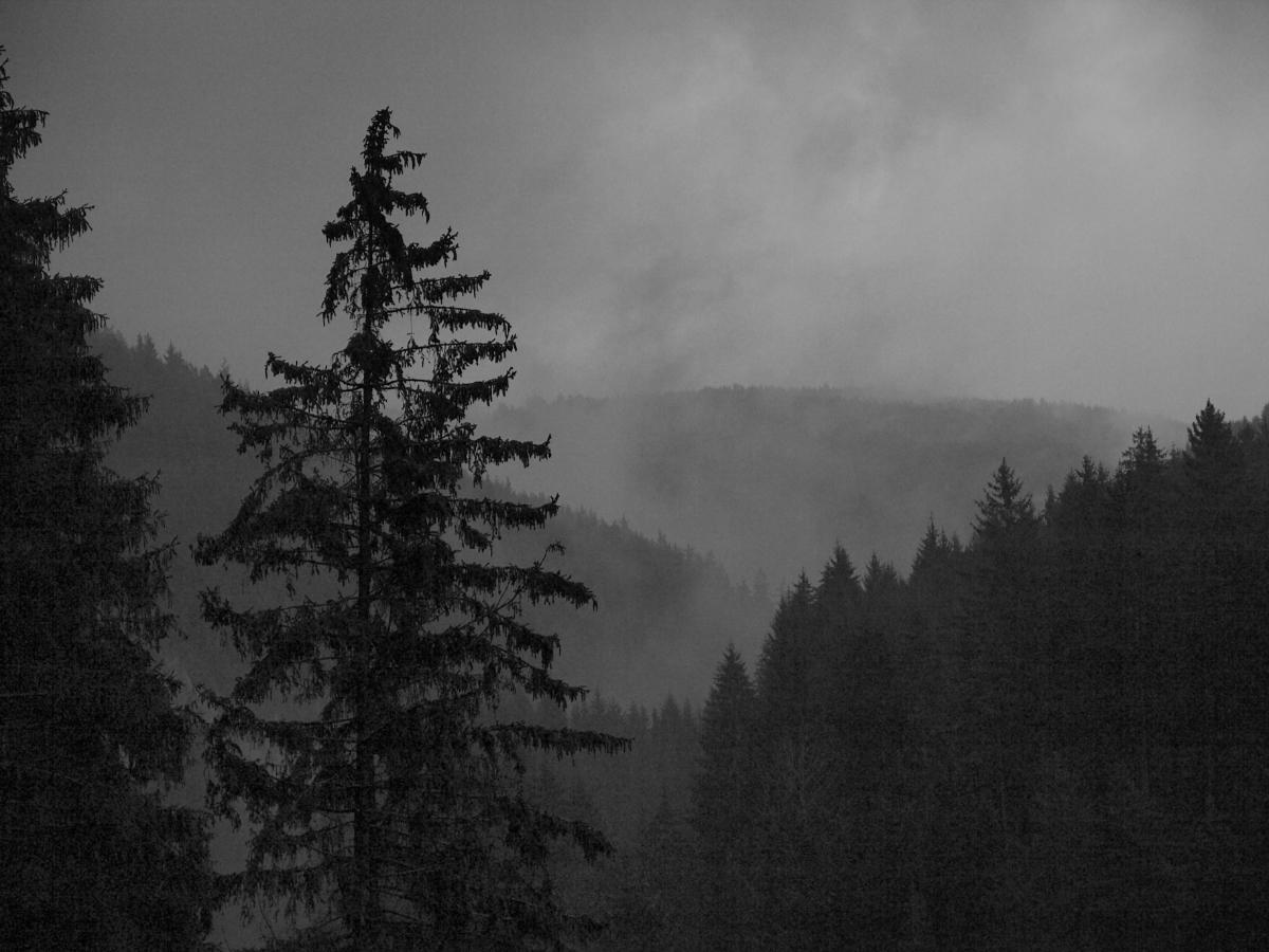 Nebel steigt aus dem Sormit auf