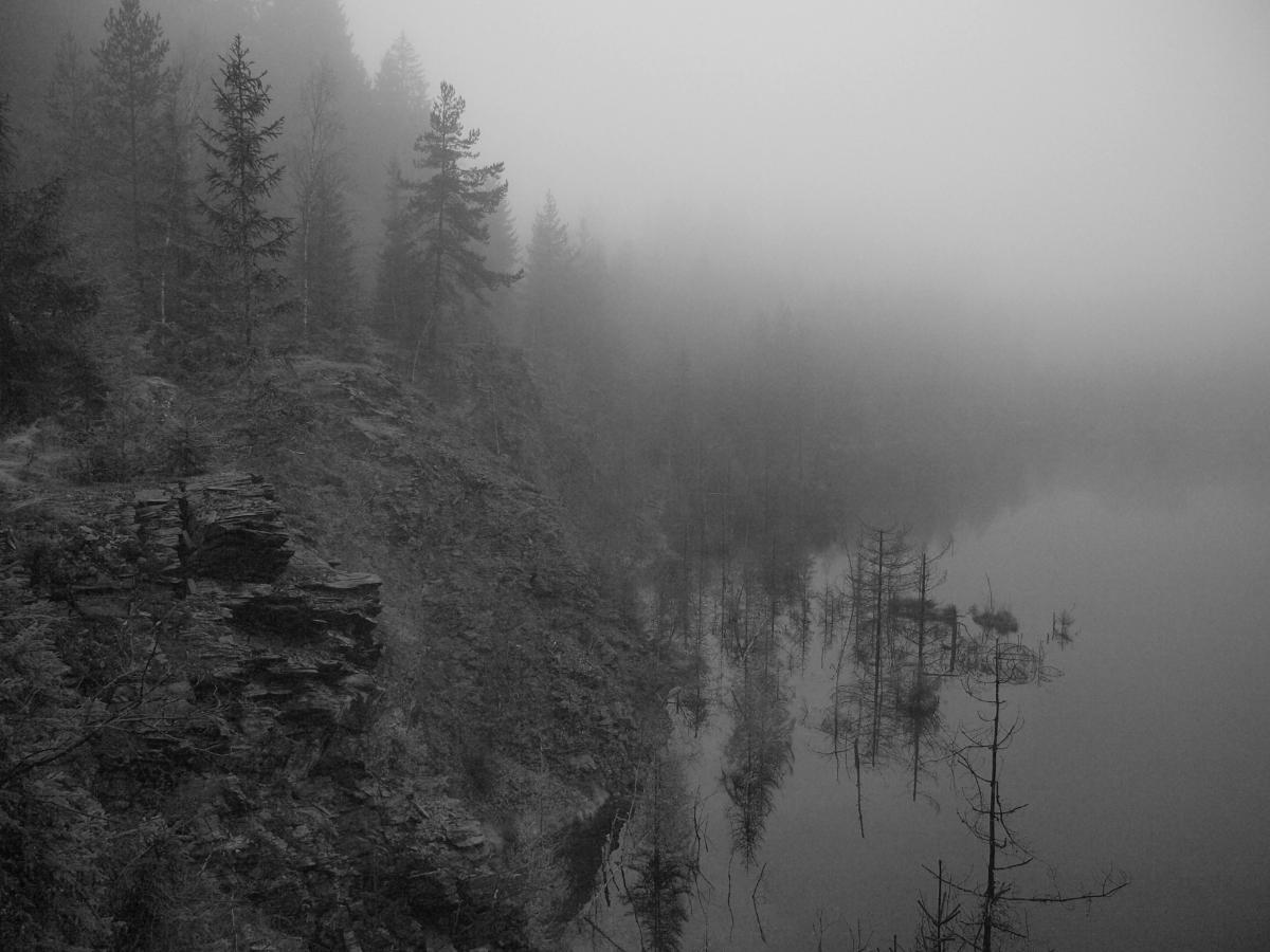 Nebel in den frühen Morgenstunden