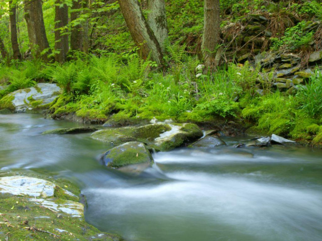 Im Schiefergebirge können Sie wunderschöne Täler entdecken.
